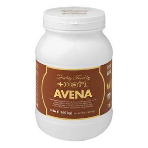 AVENA QUALITY FOOD NOCCIOLA